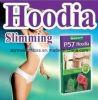 Cacto de Hoodia que Slimming cápsulas da perda de peso de Softgel
