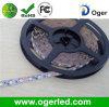 높은 산출 유연한 LED 지구 (OGR-009)