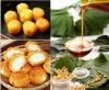 Lecitina enriquecida/concentrada da soja