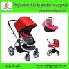 Baby-Spaziergänger 3 in-1