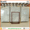 Natureza Polished Bianco Carrara White Marble para a bancada/Wall