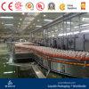 Chaîne de production de jus de boissons d'énergie de bouteille d'animal familier