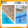 Scaletta di punto poco costosa della piscina dell'acciaio inossidabile