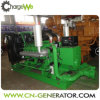 Heißer Biogas-Gas-Generator-Set-Export des Verkaufs-20kw-1200kw nach Indonesien