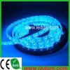 Nastro dei nastri/LED del LED (GM-TJ3528UB60)