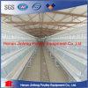 판매를 위한 Jinfeng Lause 닭 농장 가금 장비