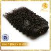 卸し売りVirignインドHair Extension 6A GradeインドCurly Wave Hair (TFH-NL50)