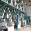 Máquina do moinho da pedra da farinha de trigo (6FTS-24S)