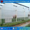 低価格のトマトのための商業プラスチック軽い剥奪の温室