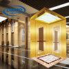 Ascenseur d'intérieur de passager de la grande capacité (Deeoo-238)