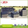 Sofá ao ar livre do Rattan redondo ajustado (DH-866)