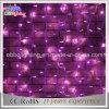 600LEDsピンクカラーLEDカーテンライトの中国の直接製造業者