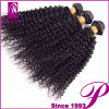 Vente en gros Unprocessed 100% 5A 6A 7A 8A Afro brésilien Kinky Human Hair