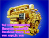 Motores diesel marinas de la serie 2000V de Z12V190bc (800~1000KW)