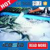 Fácil instalar la fábrica de hielo industrial refrigerada por agua de la mezcla