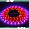 Controllo di pubblicità contentissimo CI 30LEDs, 60LED, striscia dell'indicatore luminoso di striscia di DC5V LED ApA102 di 144LEDs LED dalla Cina