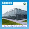 Elektrisches Glasgewächshaus mit allen Systemen