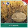 Fertilizzante solubile in acqua dell'amminoacido di 100%