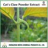 100% 알카로이드를 가진 자연적인 나물 고양이의 클로 분말 추출 UV 1%-5%