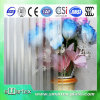 3mm-6mm Clear Acid Etched Patterned Glass avec du CE \ GV