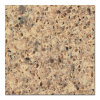 Marble Stone for Countertop and Vanity Top (QG265)