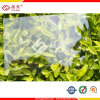 Pannelli solidi del policarbonato libero rivestito UV di Lowes che coprono lamiera sottile