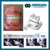 歯科矯正学の自己縛るRothの金属ブラケット