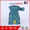 食品工業のための耐圧防爆AC電気モーター