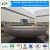 Protezioni cape ellittiche della testa della protezione dell'acciaio inossidabile grandi