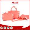 As mulheres bonitas Muti-Usam-se se o saco de mão