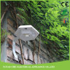 Lumière en plastique solaire extérieure blanche de détecteur de mur de jardin de chemin de DEL