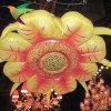A decoração inflável a mais nova do girassol da iluminação Iflt-17021302