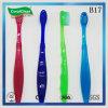 Toothbrush dei filamenti di Du Pont dei capretti con Colorized Handlle