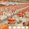 Automatisches Geflügel-Gerät für Brüter-Bauernhof mit Fertighaus-Aufbau
