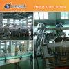 Machine de remplissage de l'eau de bouteille d'animal familier (séries de CGN)