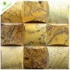 Naturaleza Piedra Azulejos de mosaico para paredes interiores / exteriores