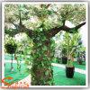 Comercio al por mayor diverso tamaño Personalizar Artificial Árbol Baobab