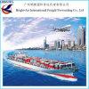 국제 경기 20FT 40FT 40hc 45  콘테이너 출하는 평가한다 중국에서 Wolrdwide (아르헨티나 등등)에 바다 운임을