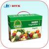 Gedrucktes Fruit Packing Carton Box mit Handle