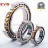 China-Zubehör-konkurrenzfähiger Preis Zys zylinderförmiges Rollenlager N1040k Nn3040k