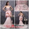 vestido de noite strapless do trem da capela da cor-de-rosa nova da chegada 2013 (6743)