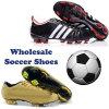 自由な船積みの男子サッカーの靴