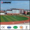 Fußballplatz-künstlicher Teppich-Gras-Fußball