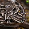 Eygptへの高品質のCineseのヒマワリの種5009