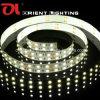 Lumière à deux lignes de l'UL SMD 5050 120 LEDs/M Non-Wateproof LED
