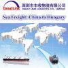 Transporte da carga do oceano de China a Hungria