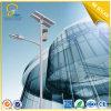 10m 100W Solar Street Light Around The World