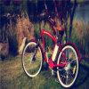 الصين [هيغر] - نوعية درّاجة كهربائيّة [رسب-1214]