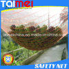 HDPE Agriculture Fruit 또는 Olive Net/Harvest Nets/Collection/Collecting Net