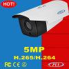 5 Megapixel Poe H. 265 Bullet IP CCTV Camera